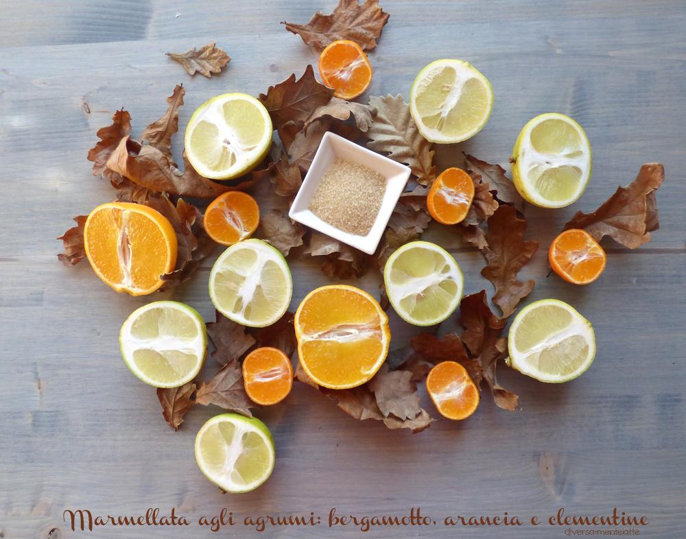 ingredienti marmellata agli agrumi