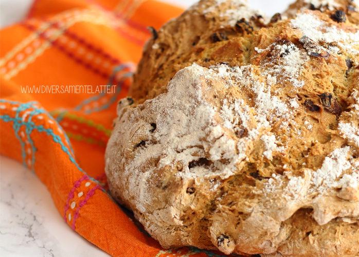 Soda bread senza lattosio, versione dolce