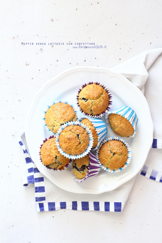 muffin senza lattosio