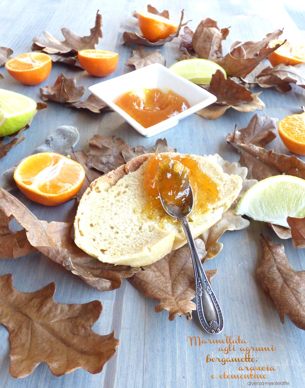 marmellata con bergamotto arancia clementine