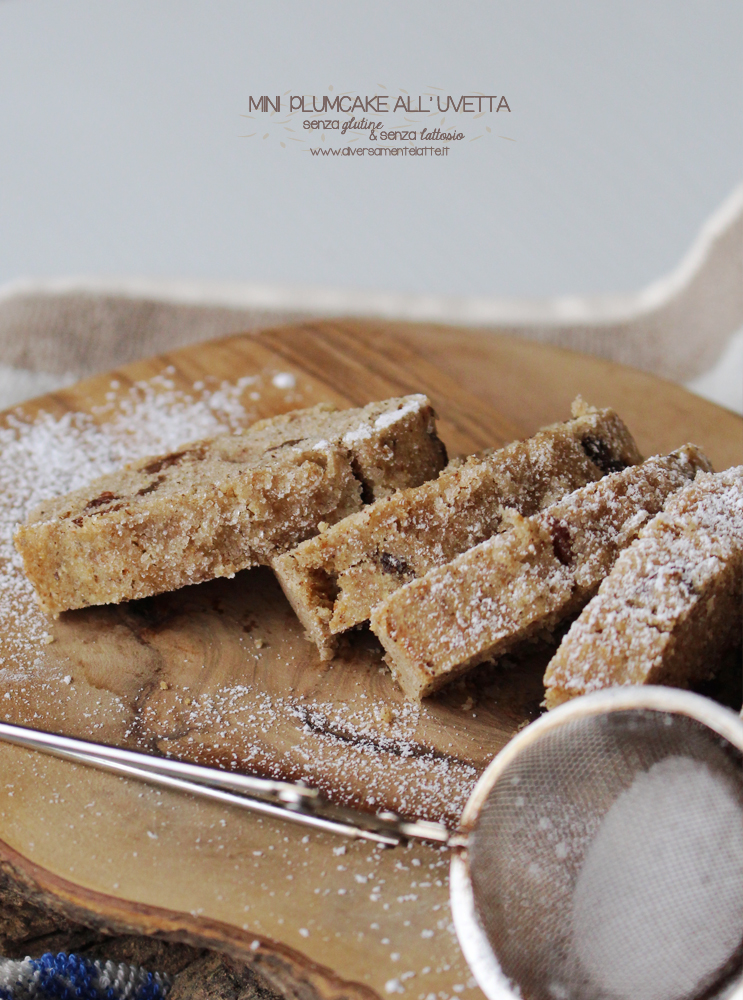 mini plumcake senza glutine