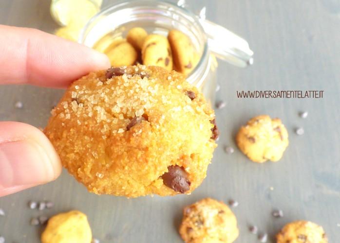 Biscotti senza glutine e senza lattosio