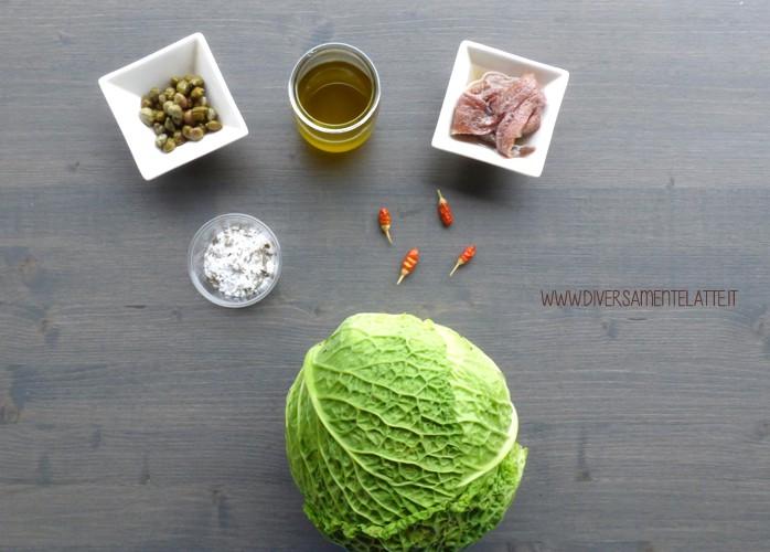 Pesto di cavolo verza