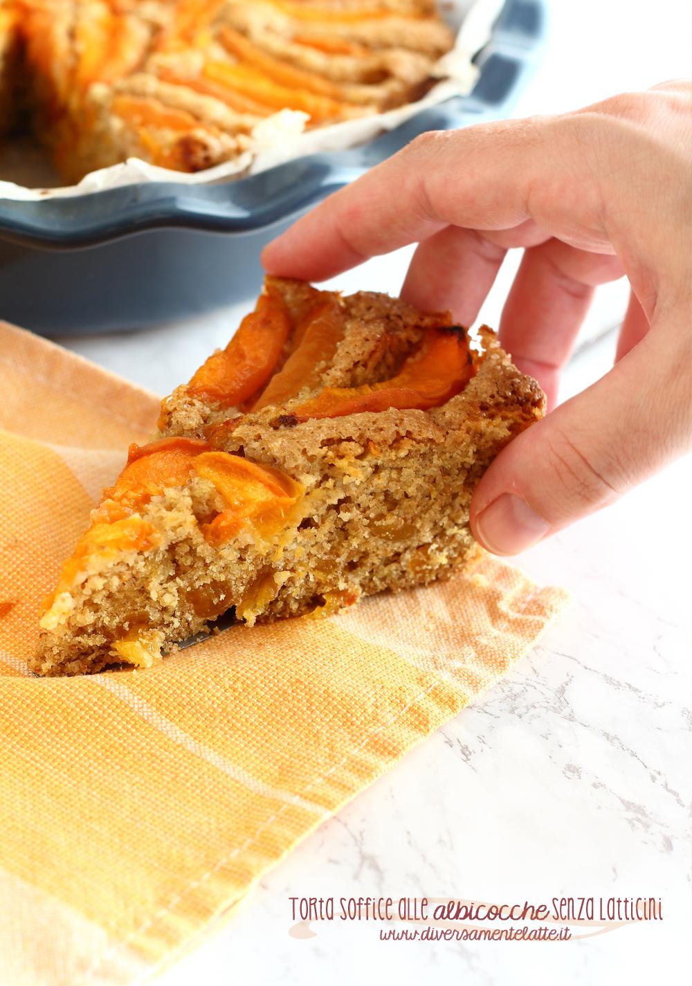 fetta di torta alle albicocche senza latticini