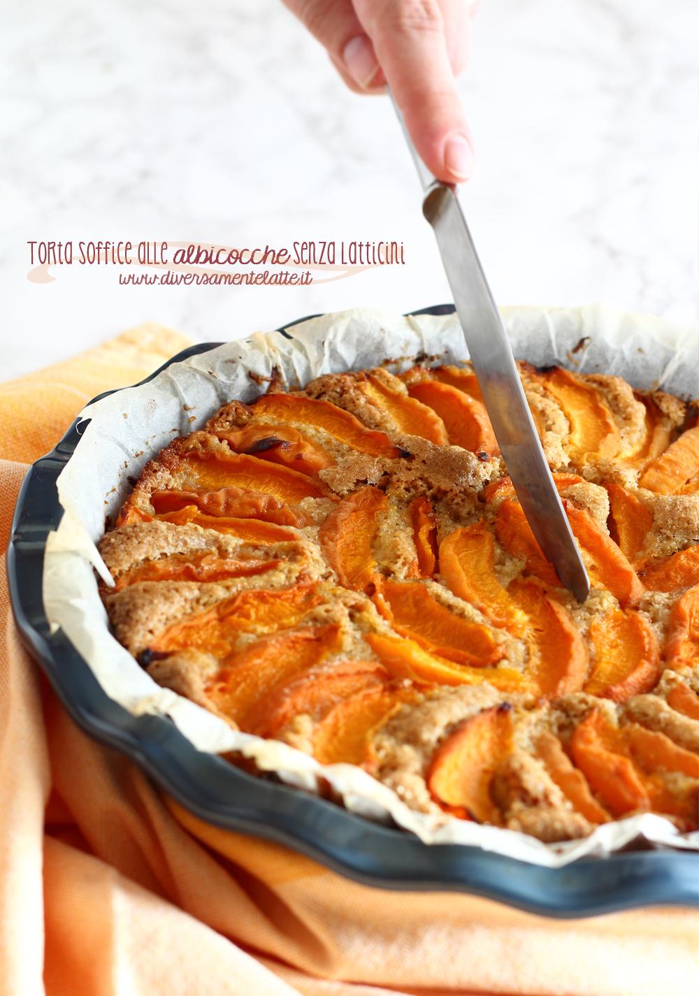 torta alle albicocche senza latticini
