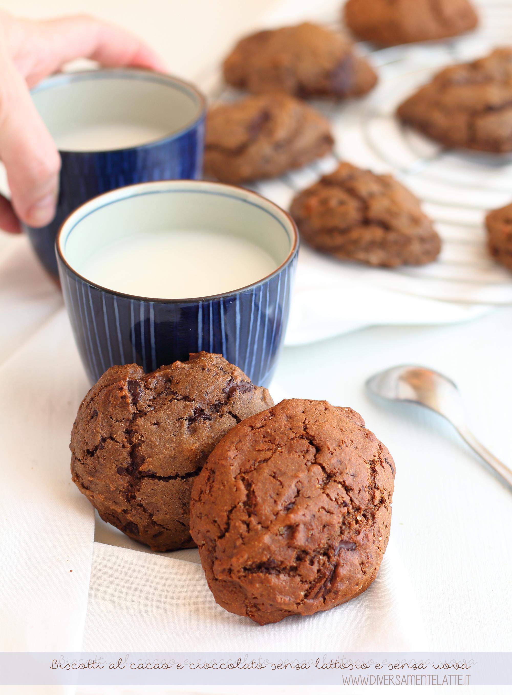 Biscotti al cacao e cioccolato senza lattosio senza uova