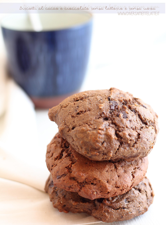 Biscotti al cacao e cioccolato vegan