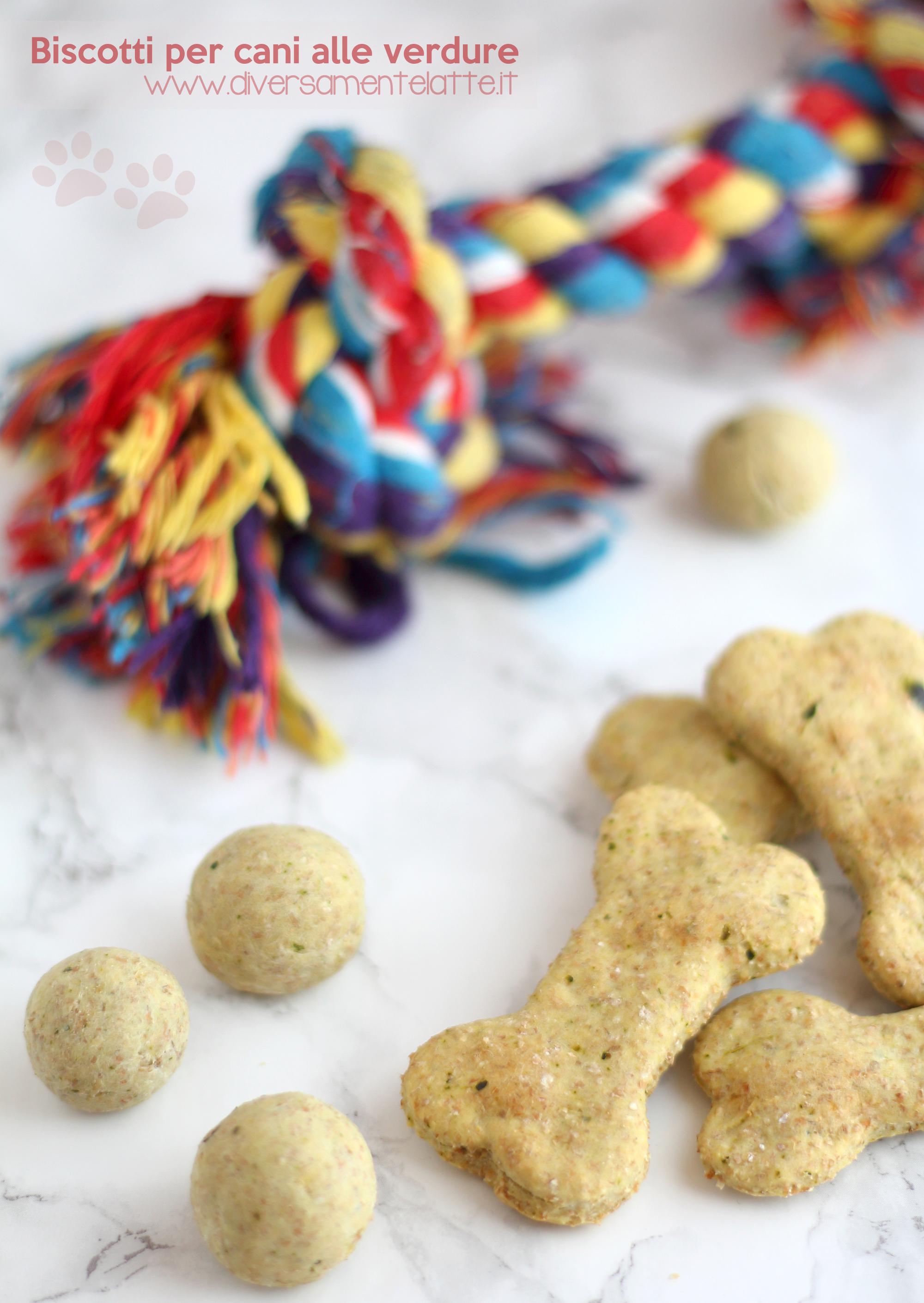 biscotti cani alle verdure