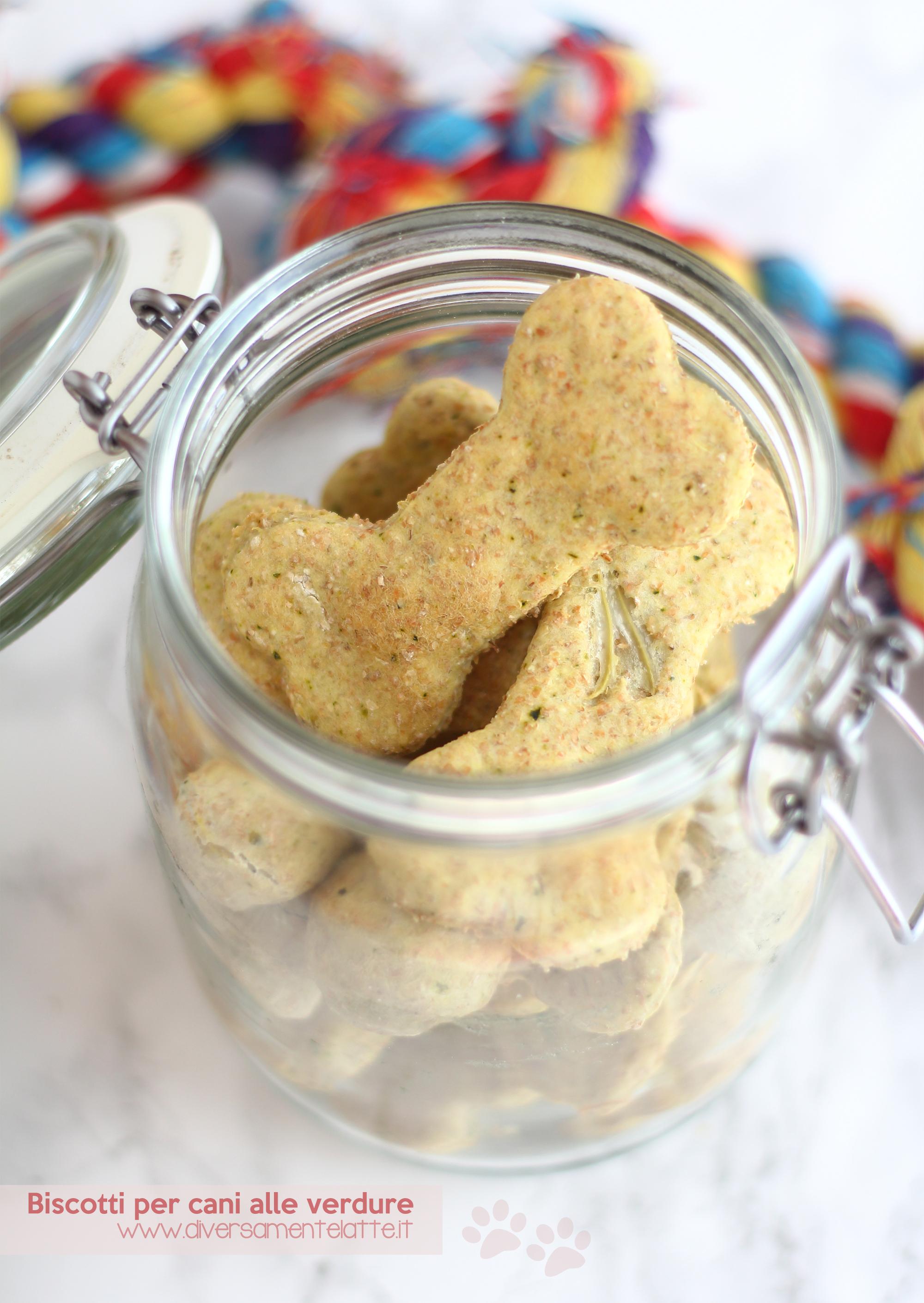 biscotti cani zucchine e finocchi