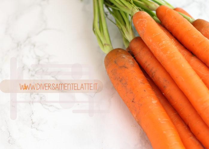 Ciambellone vegan alle carote e semi oleaginosi