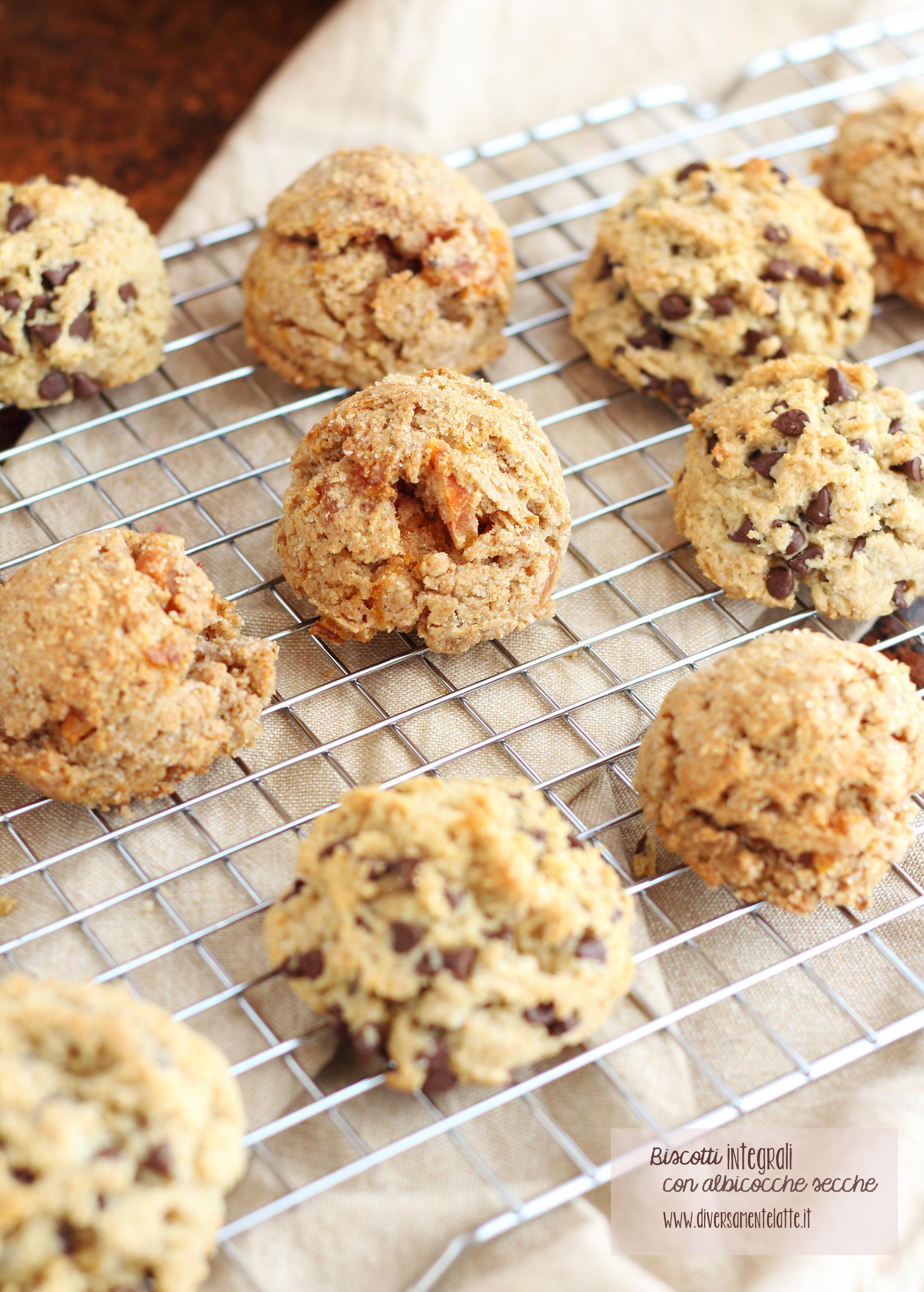 biscotti con frutta secca senza burro