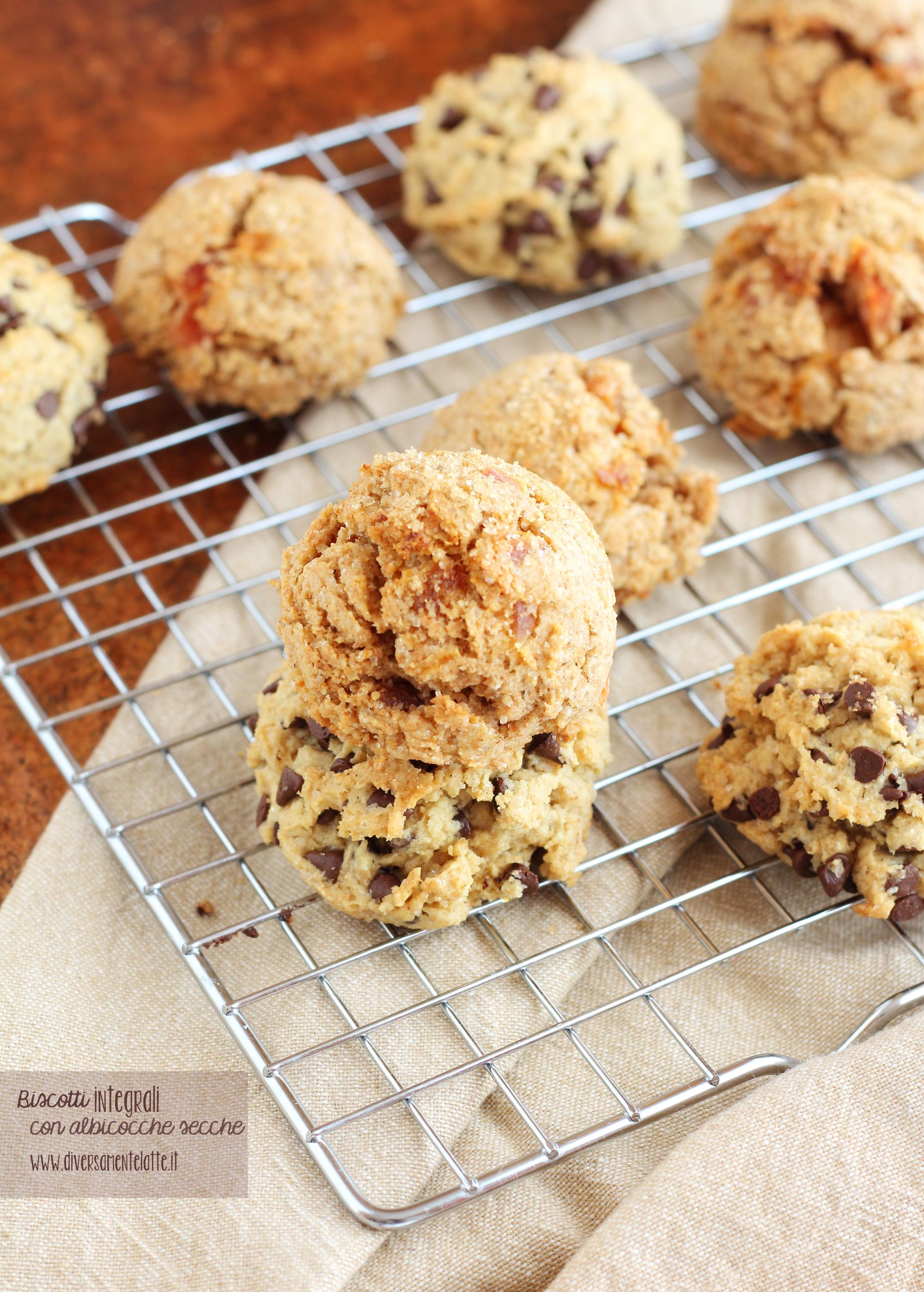 biscotti integrali vegan