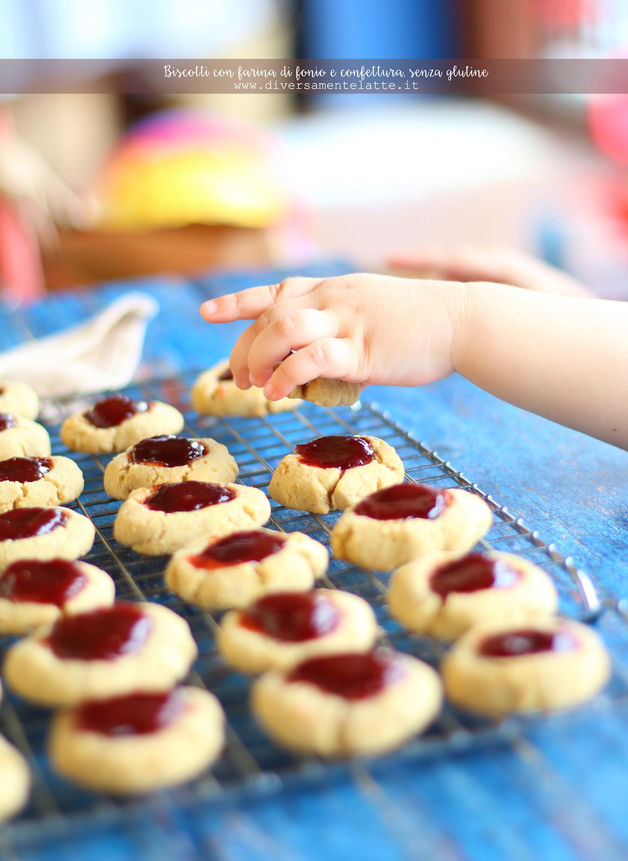 biscotti con farina di fonio