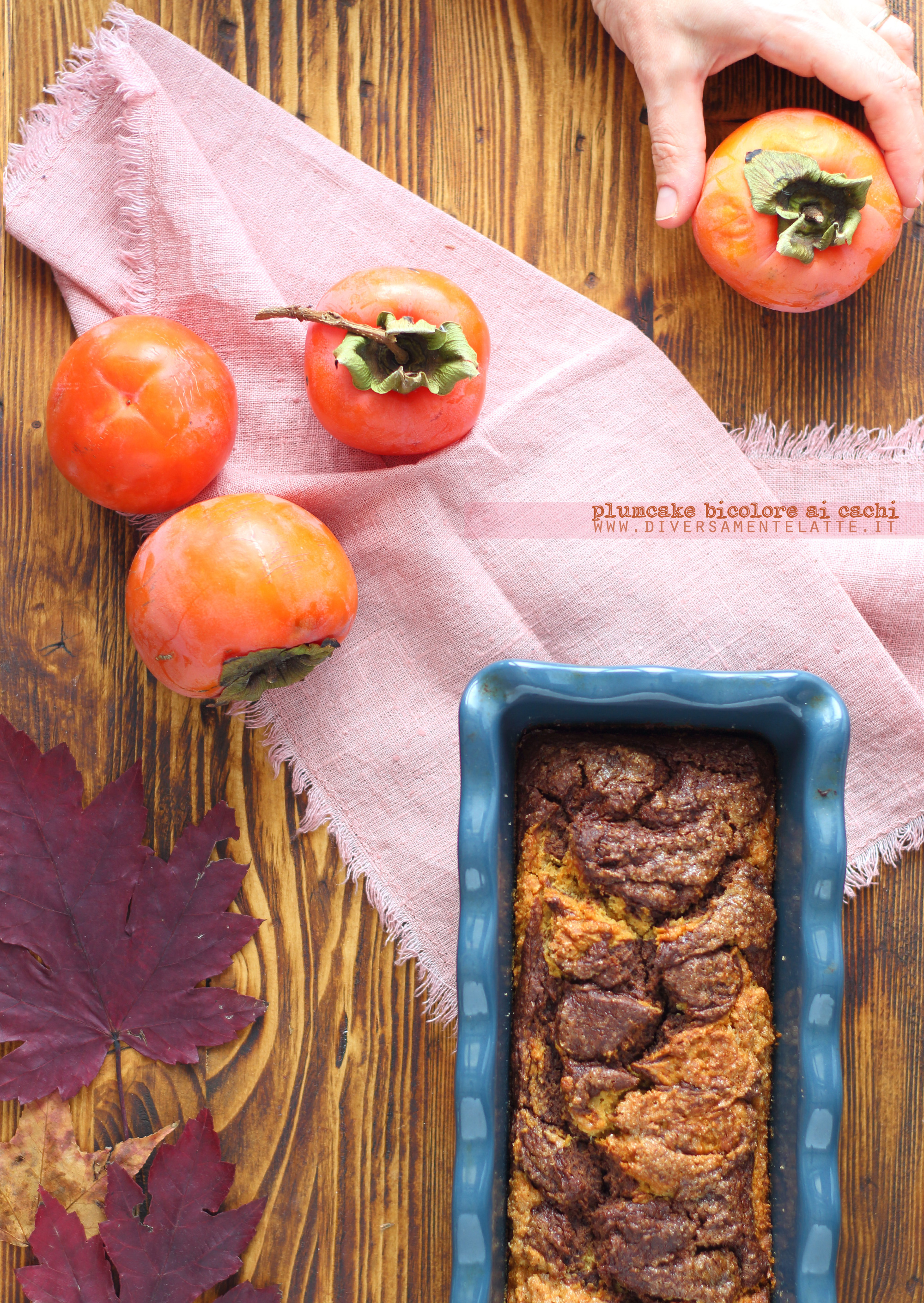 plumcake bicolore ai cachi senza lattosio