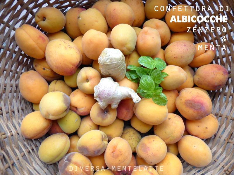 Ingredienti confettura albicocche zenzero e menta