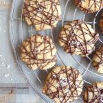 biscotti cocco e cioccolato senza glutine