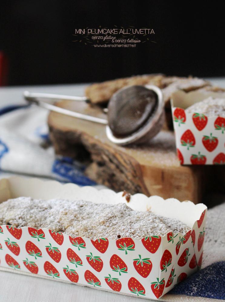mini plumcake all'uvetta senza glutine senza lattosio