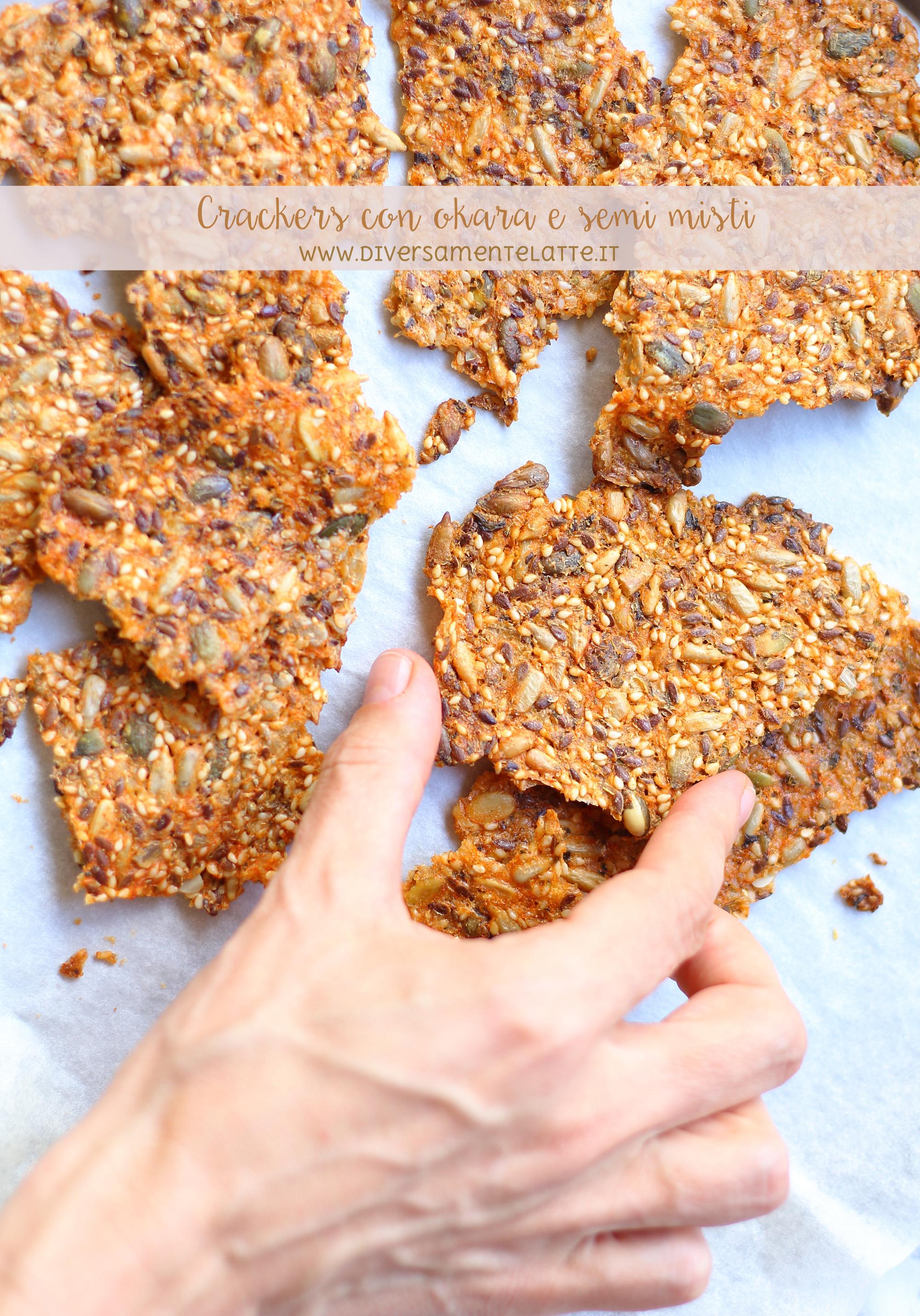crackers con okara