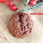 diversamentelatte_biscotti al doppio cioccolato e zenzero